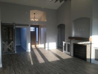 Fireplace & Barn Door